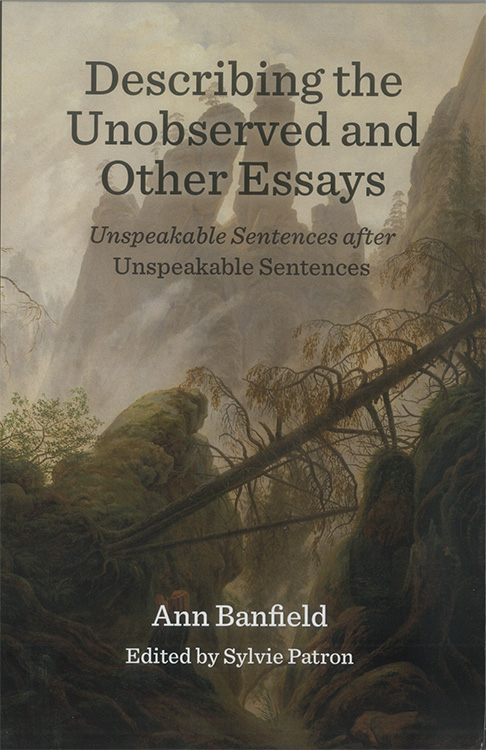 Describing the Unobserved and Other Essays: Unspeakable Sentences After Unspeakable Sentences